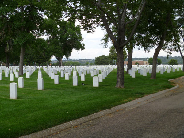 A view of layer of grass topped by rows of tombstones and leafy trees standing at various spots around the cemetery.