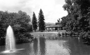 A black and white photo of the lake with a fountain and building in the background. On either side are a set of trees with two tall pine trees in the background.