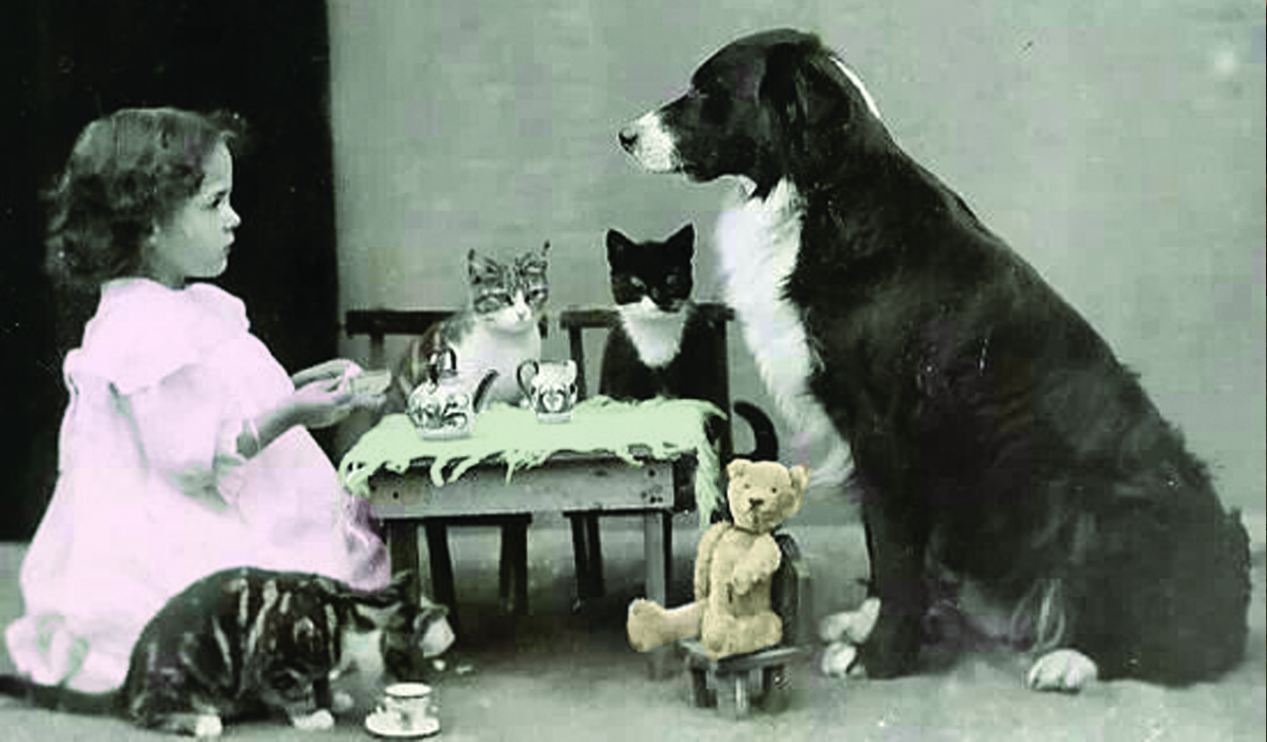 A small child in a white dress sits at a table for tea with three cats, a dog, and a stuffed teddy bear.