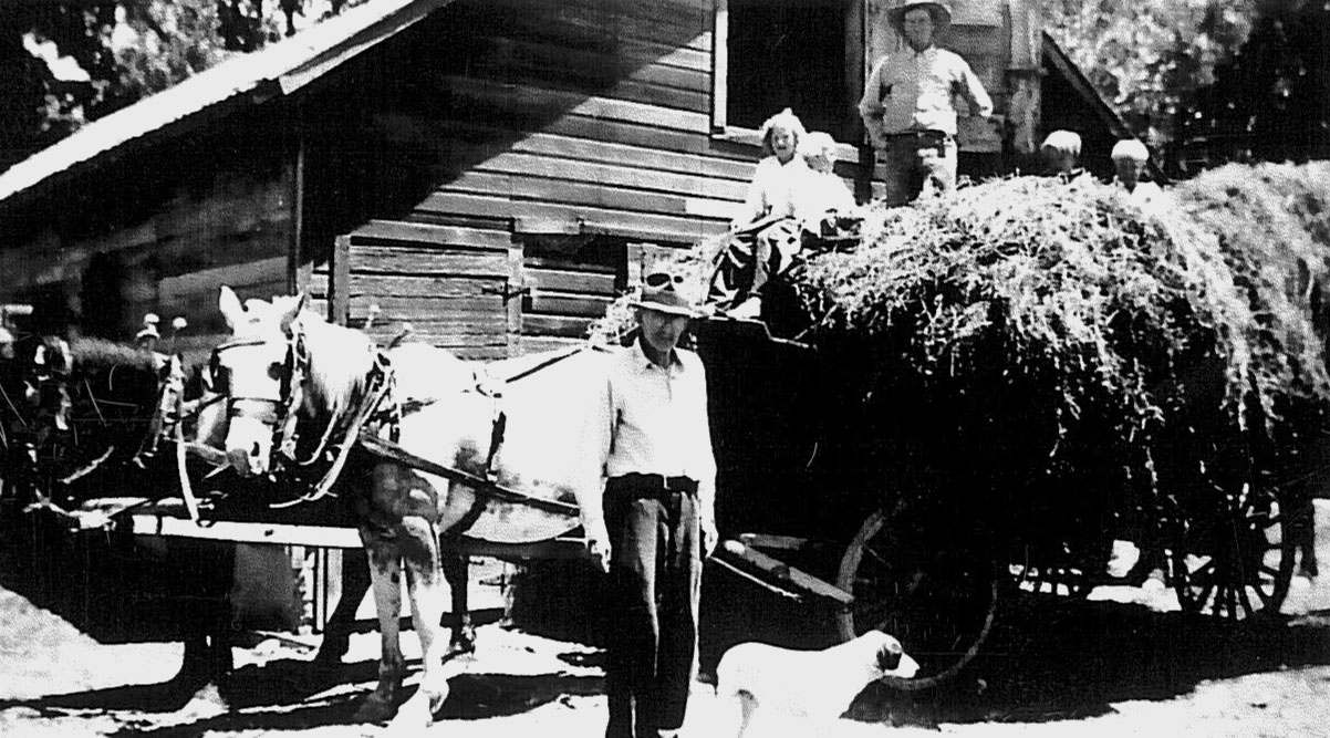 Historic image showing a wagon load of hay outside a barn.