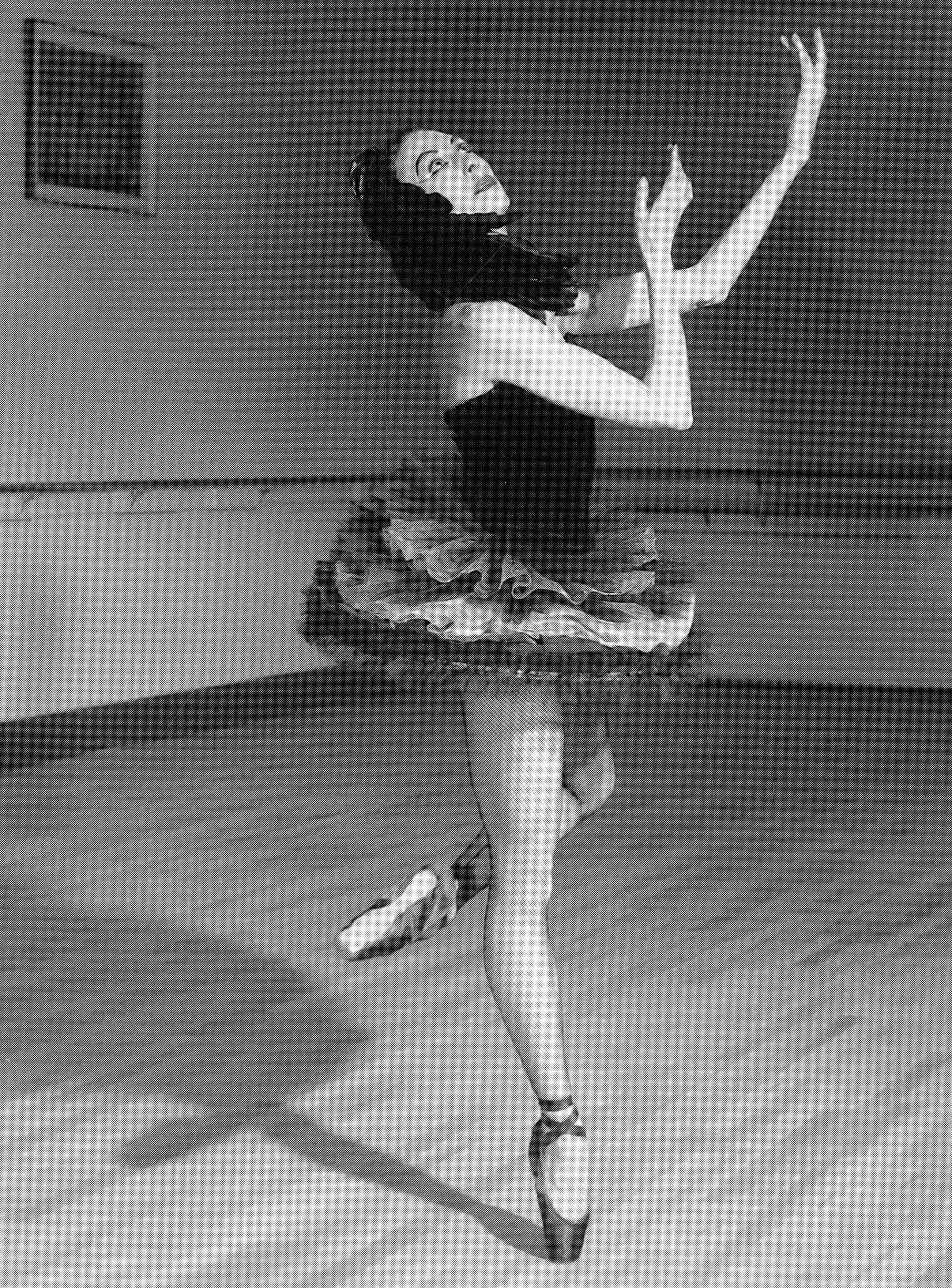 Lillian Covillo