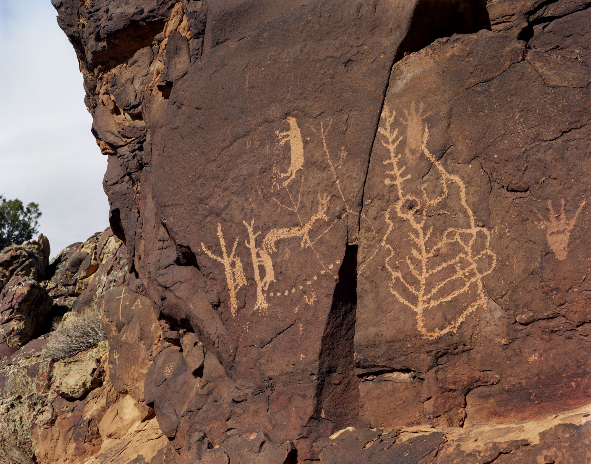Pictographs on red rock