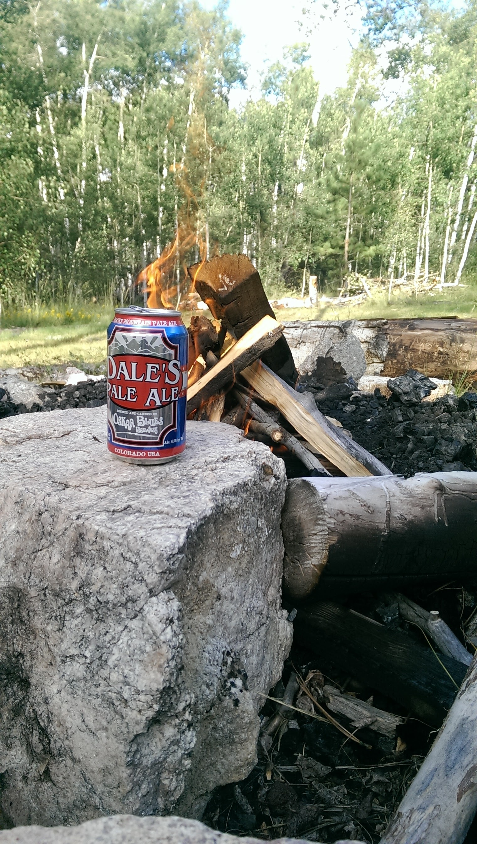 can of Dale's Pale Ale by a campfire