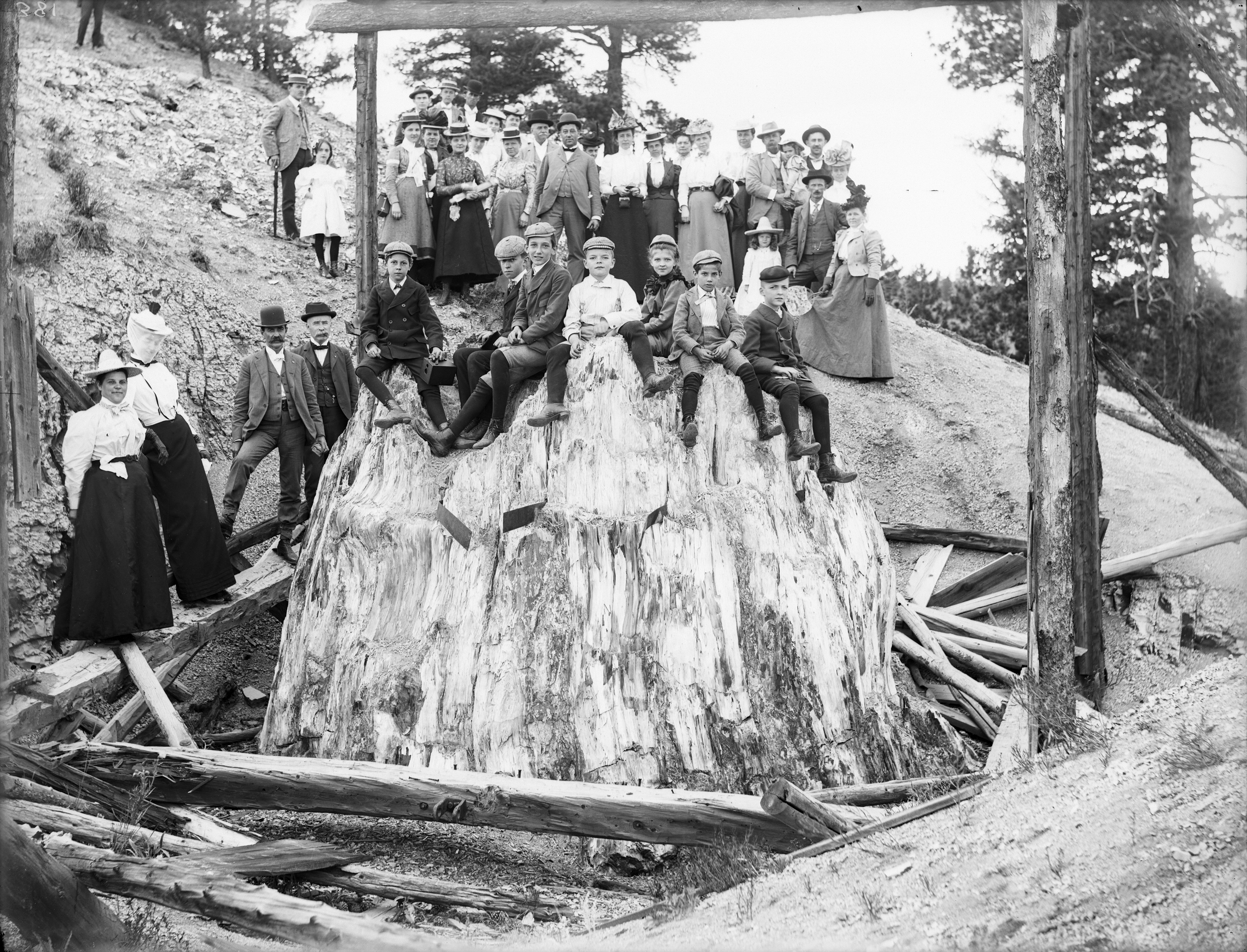 Photo of a group of people standing on the side of a hill, gathered around a giant petrified tree stump, upon which seven youngsters are seated. This photo dates to the 1870s, and the women in the group are wearing long dark-colored skirts with blouses and jackets and hats, the men wear suits and bowler hats, and the young boys are wearing knickers with long socks as well as hats.