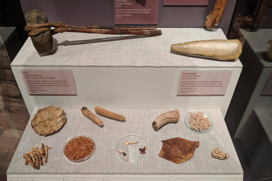 Display case of a Ancestral Pueblo Tools and other materials