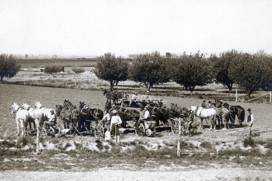 The Westesen family suggests that this 1912 image appears to show that Carl Westesen brought out all of the equipment and teams of horses to show them off.  In the foreground is Carl, holding the hand of his 2-yr old son, Harold.