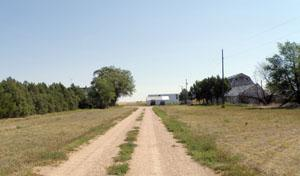 A view down a two-track towards buildings on the Hargreaves Homestead.
