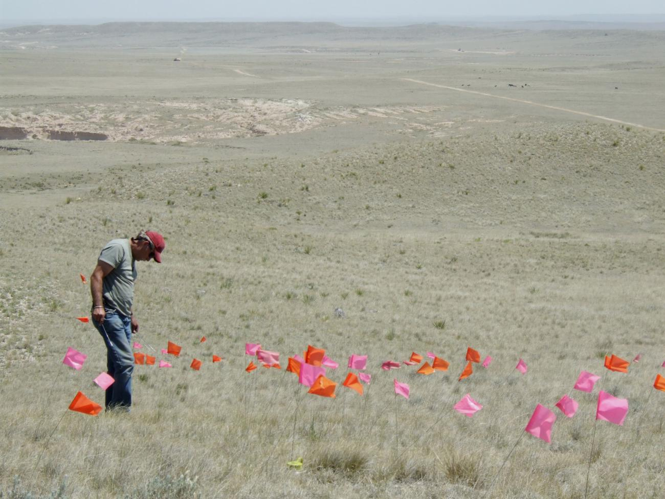 PAAC volunteer Larry Scarborough marking artifacts on a site near Pawnee Buttes.