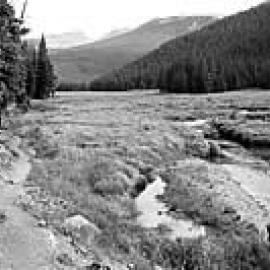A black and white photo of the trail next to a field and body of water with sloping evergreen trees on the side and rolling mountains in the background.